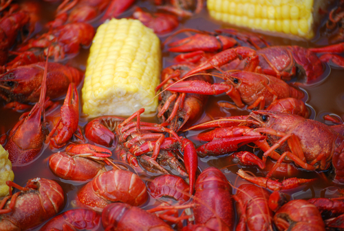 Things to do in new orleans louisiana seafood festival for What to do on new orleans